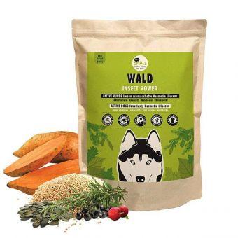 Proteinreiches Futter mit Insekten für aktive Hunde